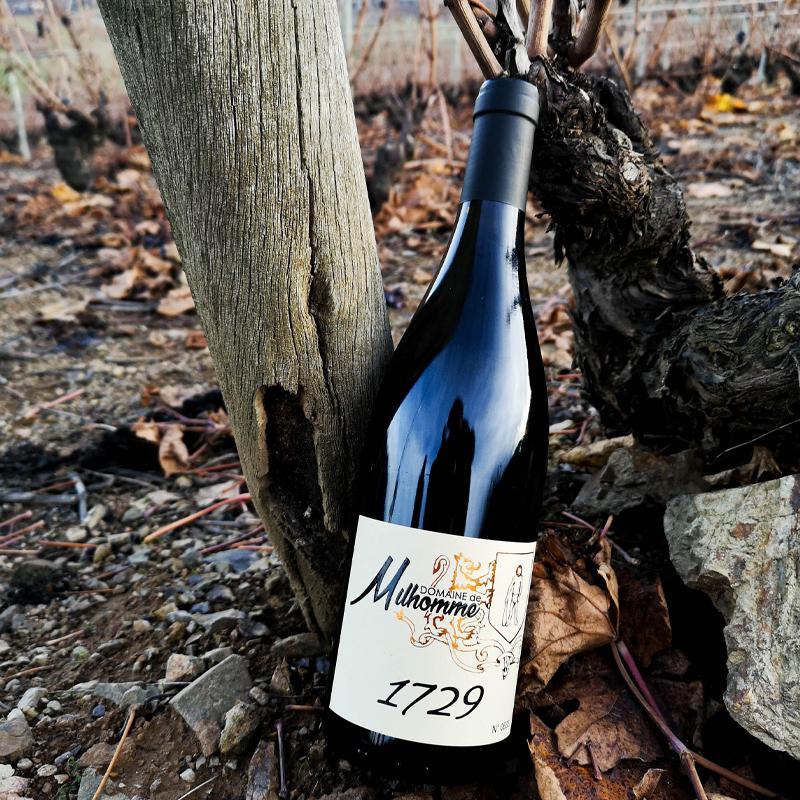 une bouteille de cuvée 1729 dans les vignes
